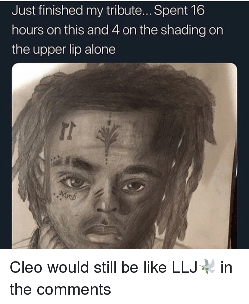 Being Alone, Be Like, and Memes: Just finished my tribute... Spent 16  hours on this and 4 on the shading on  the upper lip alone Cleo would still be like LLJ🕊 in the comments
