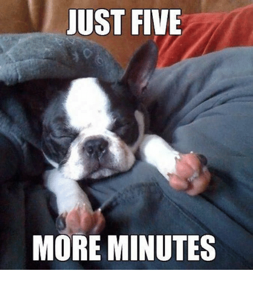 Five More Minutes
