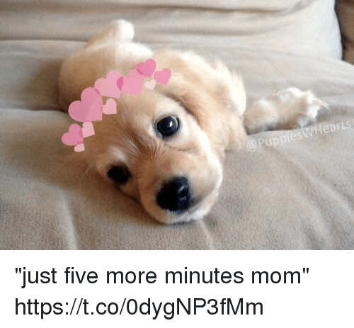 "Girl Memes, Mom, and Five: ""just five more minutes mom"" https://t.co/0dygNP3fMm"