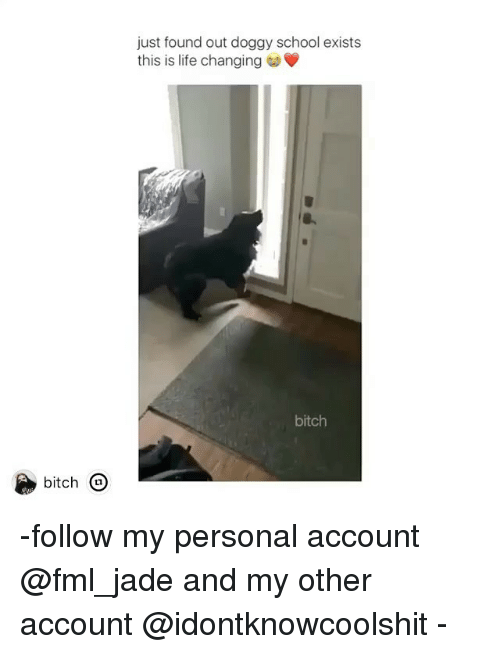 Bitch, Fml, and Ironic: just found out doggy school exists  this is life changing  bitch  bitch -follow my personal account @fml_jade and my other account @idontknowcoolshit -