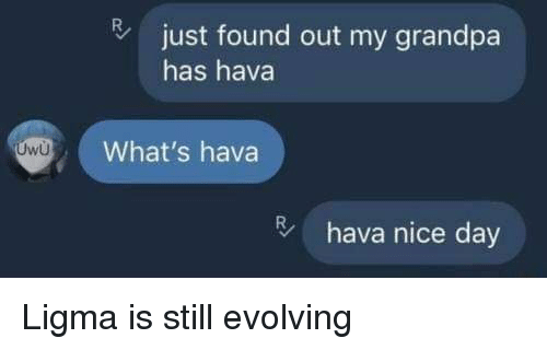 Grandpa, Nice, and Day: just found out my grandpa  has hava  What's hava  hava nice day Ligma is still evolving