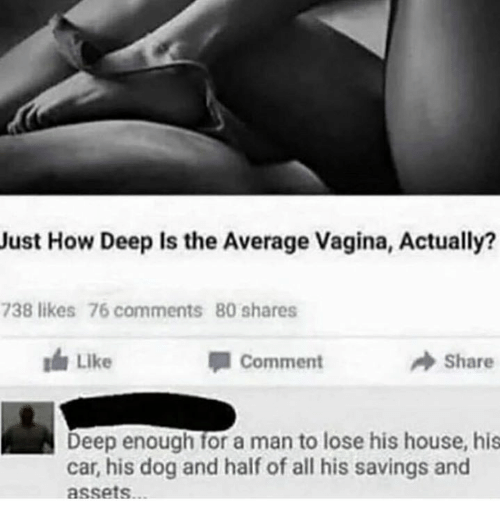 Cars, Dogs, and House: Just How Deep is the Average vagina, Actually?  738 likes 76 comments 80 shares  Comment  A Share  Deep enough for a man to lose his house, his  car, his dog and half of all his savings and  assets