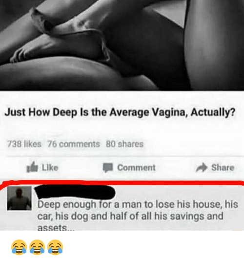 House, Vagina, and How: Just How Deep Is the Average Vagina, Actually?  738 likes 76 comments 80 shares  Like  comment  A Share  Deep enough for a man to lose his house, his  car, his dog and half of all his savings and  assets 😂😂😂