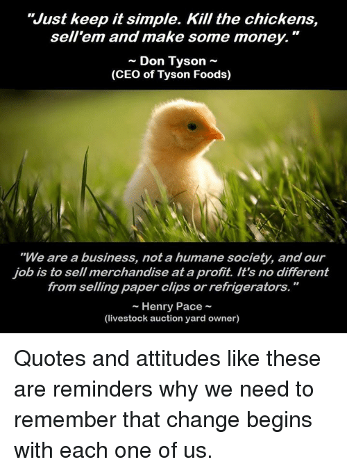 Just Keep It Simple Kill The Chickens Sellem And Make Some Money R