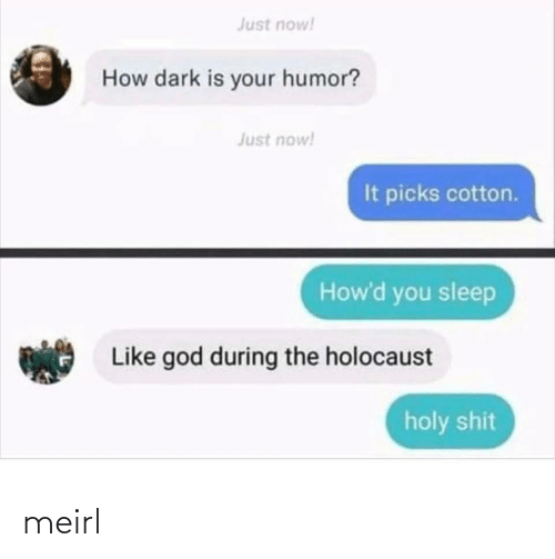 God, Holocaust, and Sleep: Just now!  How dark is your humor?  Just now!  It picks cotton.  How'd you sleep  Like god during the holocaust  holy shit meirl