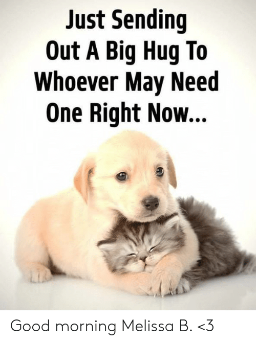 Memes, Good Morning, and Good: Just Sending  Out A Big Hug To  Whoever May Need  One Right Now... Good morning Melissa B. <3