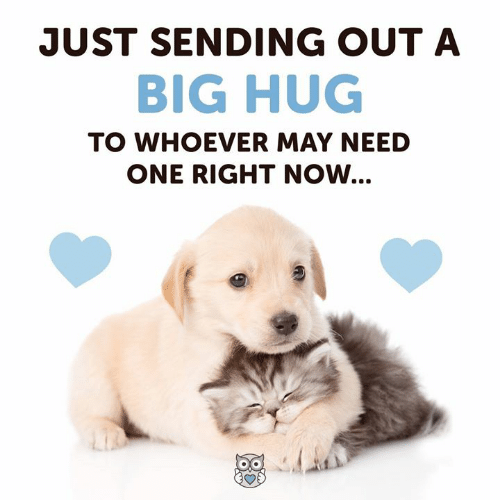 Memes, 🤖, and Big: JUST SENDING OUT A  BIG HUG  TO WHOEVER MAY NEED  ONE RIGHT NOW...