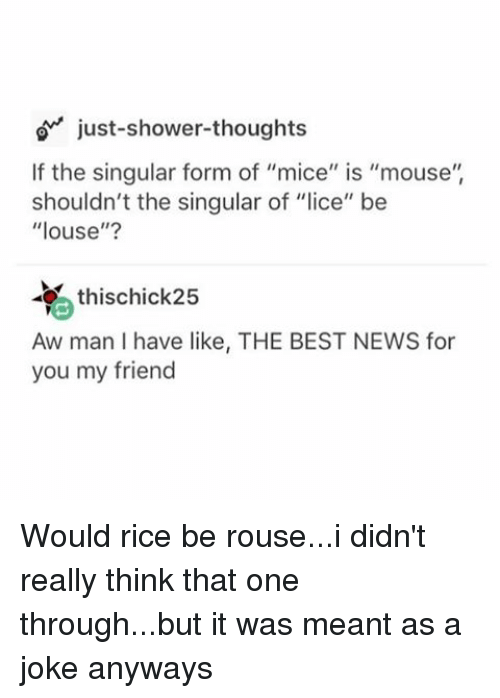Just Shower Thoughts if the Singular Form of Mice Is Mouse Shouldn ...