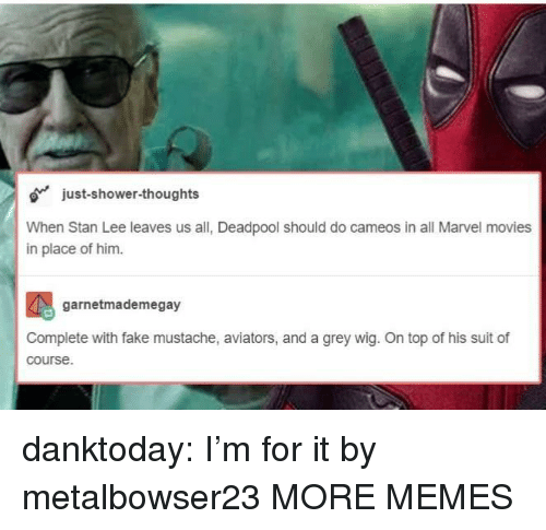 Dank, Fake, and Memes: just-shower-thoughts  When Stan Lee leaves us all, Deadpool should do cameos in all Marvel movies  in place of him.  garnetmademegay  Complete with fake mustache, aviators, and a grey wig. On top of his suit of  course. danktoday:  I'm for it by metalbowser23 MORE MEMES