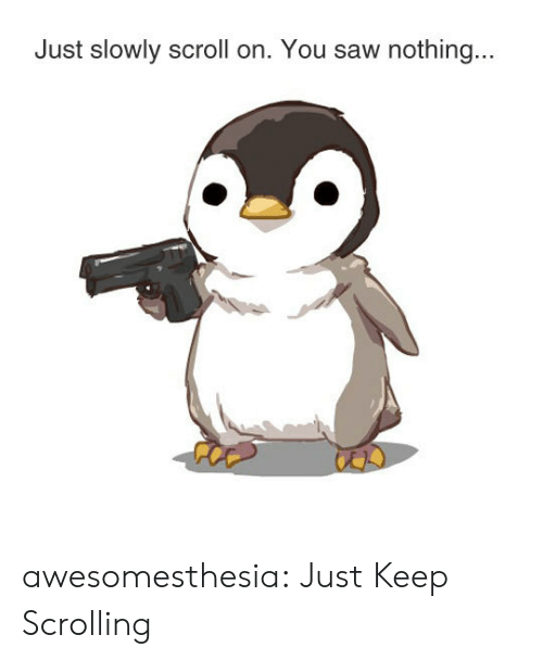 Saw, Tumblr, and Blog: Just slowly scroll on. You saw nothing... awesomesthesia:  Just Keep Scrolling