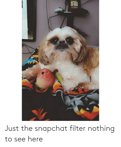 Snapchat, Filter, and Nothing: Just the snapchat filter nothing to see here