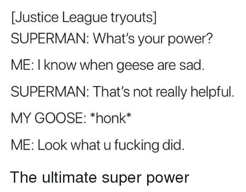 Fucking, Superman, and Justice: [Justice League tryouts]  SUPERMAN: What's your power?  ME: I know when geese are sad  SUPERMAN: That's not really helpful  MY GOOSE: *honk*  ME: Look what u fucking did. The ultimate super power