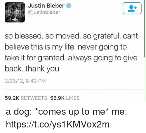 Blessed, Funny, and Justin Bieber: Justin Bieber  ajustinbieber  so blessed. so moved. so grateful. cant  believe this is my life. never going to  take it for granted. always going to give  back, thank you  2/29/12, 8:43 PM  59.2K  RETWEETS  55.9K  LIKES a dog: *comes up to me*   me: https://t.co/ys1KMVox2m