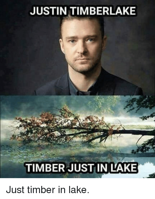 Funny, Justin TImberlake, and Timber: JUSTIN TIMBERLAKE  TIMBER JUSTIN LAKE Just timber in lake.