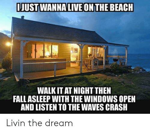 Memes, Waves, and Windows: JUSTWANNALIVE ONTHE BEACH  WALK IT AT NIGHT THEN  FALLASLEEP WITH THE WINDOWS OPEN  AND LISTEN TO THE WAVES CRASH Livin the dream