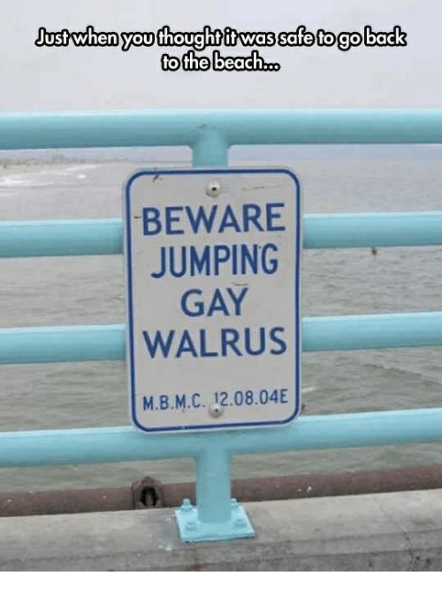 Beach, Back, and Gay: Justwhen yoothoughtitwas safe togo back  to the beach.o.  BEWARE  JUMPING  GAY  WALRUS  м.В.М.С. 12.08.04E