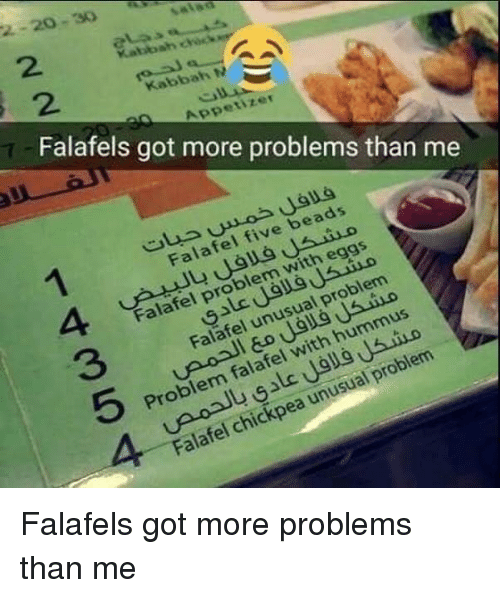 Kabbah N S Appetizer Falafels Got More Problems Than Me