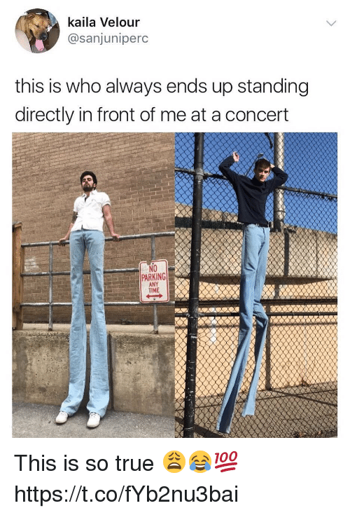 True, Time, and Who: kaila Velour  @sanjuniperc  this is who always ends up standing  directly in front of me at a concert  NO  PARKING  TIME  ard eANY This is so true 😩😂💯 https://t.co/fYb2nu3bai