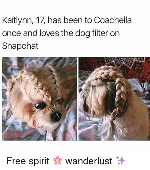 Coachella, Snapchat, and Free: Kaitlynn, 17, has been to Coachella  once and loves the dog filter on  Snapchat  If E Free spirit 🌸 wanderlust ✨