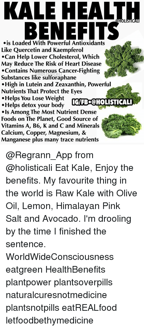 KALE HEALTH BENEFITS STICAL Is Loaded With Powerful
