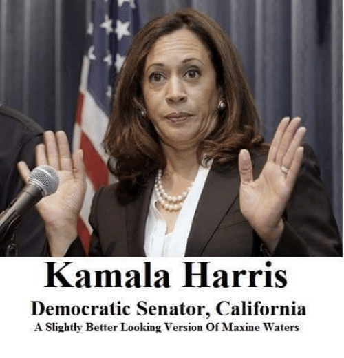 Image result for kamala harris memes