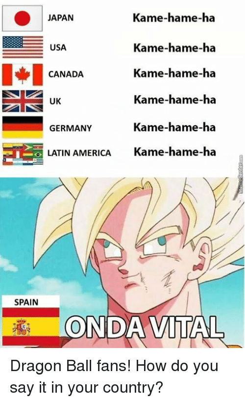 Kame Hame Ha JAPAN USA I CANADA EE UK