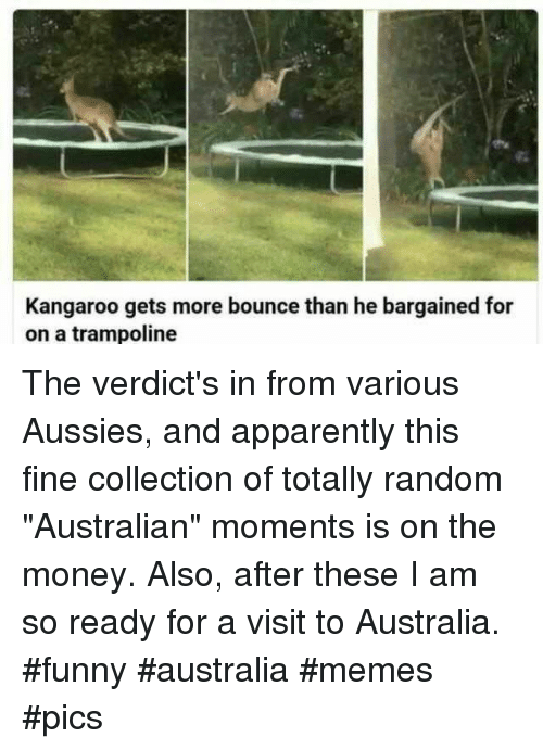 "Apparently, Funny, and Memes: Kangaroo gets more bounce than he bargained for  on a trampoline The verdict's in from various Aussies, and apparently this fine collection of totally random ""Australian"" moments is on the money. Also, after these I am so ready for a visit to Australia. #funny #australia #memes #pics"