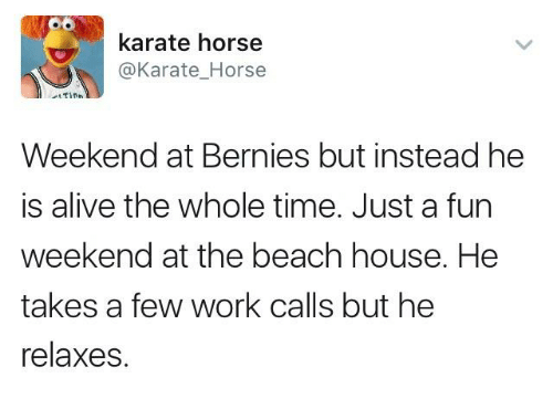 Karate Horse Horse Weekend At Bernies But Instead He Is Alive The