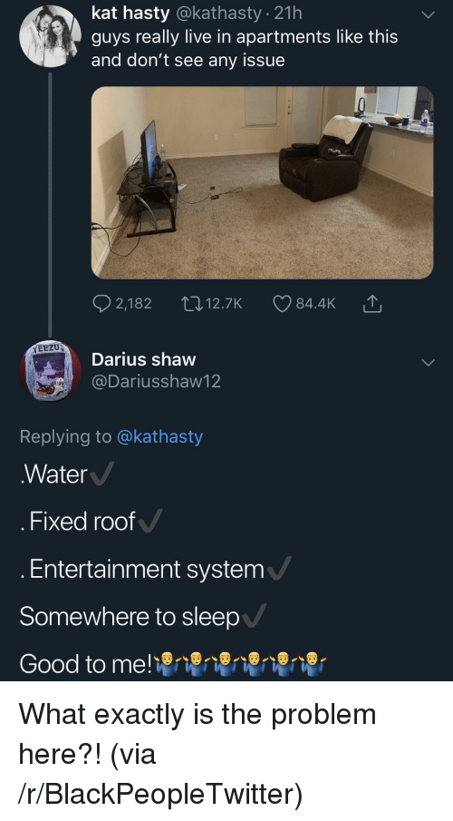 Blackpeopletwitter, Good, and Live: kat hasty @kathasty . 21h  guys really live in apartments like this  and don't see any issue  EEZU  Darius shaw  @Dariusshaw12  Replying to @kathasty  Water  . Fixed roof  Entertainment system  Somewhere to sleep  Good to me! What exactly is the problem here?! (via /r/BlackPeopleTwitter)