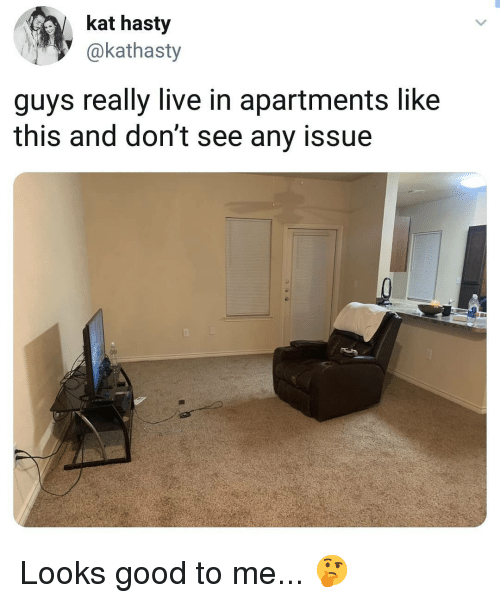 Memes, Good, and Live: kat hasty  @kathasty  guys really live in apartments like  this and don't see any issue Looks good to me... 🤔
