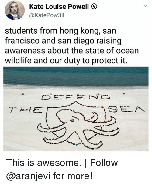 Memes, Hong Kong, and Ocean: Kate Louise Powell  @KatePow311  students from hong kong, san  francisco and san diego raising  awareness about the state of ocean  wildlife and our duty to protect it. This is awesome.   Follow @aranjevi for more!