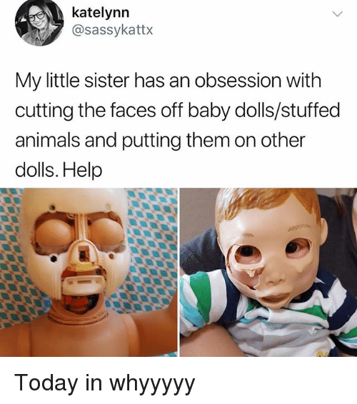 Animals, Memes, and Help: katelynn  @sassykattx  My little sister has an obsession with  cutting the faces off baby dolls/stuffed  animals and putting them on other  dolls. Help Today in whyyyyy