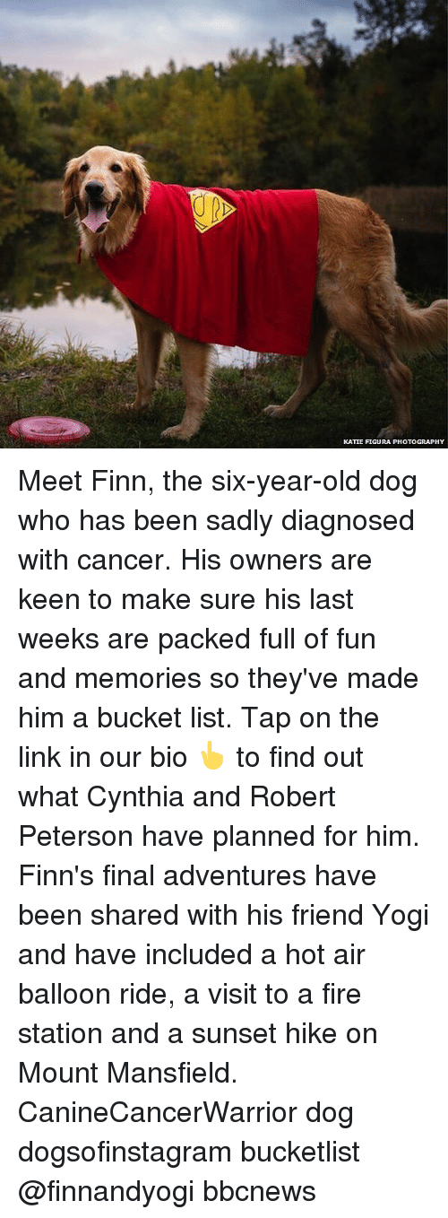 Bucket List, Finn, and Fire: KATIE FIGURA PHOTOGRAPHY Meet Finn, the six-year-old dog who has been sadly diagnosed with cancer. His owners are keen to make sure his last weeks are packed full of fun and memories so they've made him a bucket list. Tap on the link in our bio 👆 to find out what Cynthia and Robert Peterson have planned for him. Finn's final adventures have been shared with his friend Yogi and have included a hot air balloon ride, a visit to a fire station and a sunset hike on Mount Mansfield. CanineCancerWarrior dog dogsofinstagram bucketlist @finnandyogi bbcnews