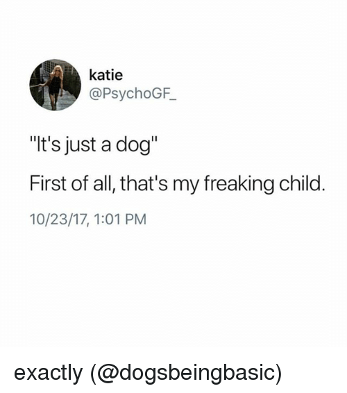 "Memes, 🤖, and Dog: katie  @PsychoGF  ""t's just a dog""  First of all, that's my freaking child  10/23/17,1:01 PM exactly (@dogsbeingbasic)"