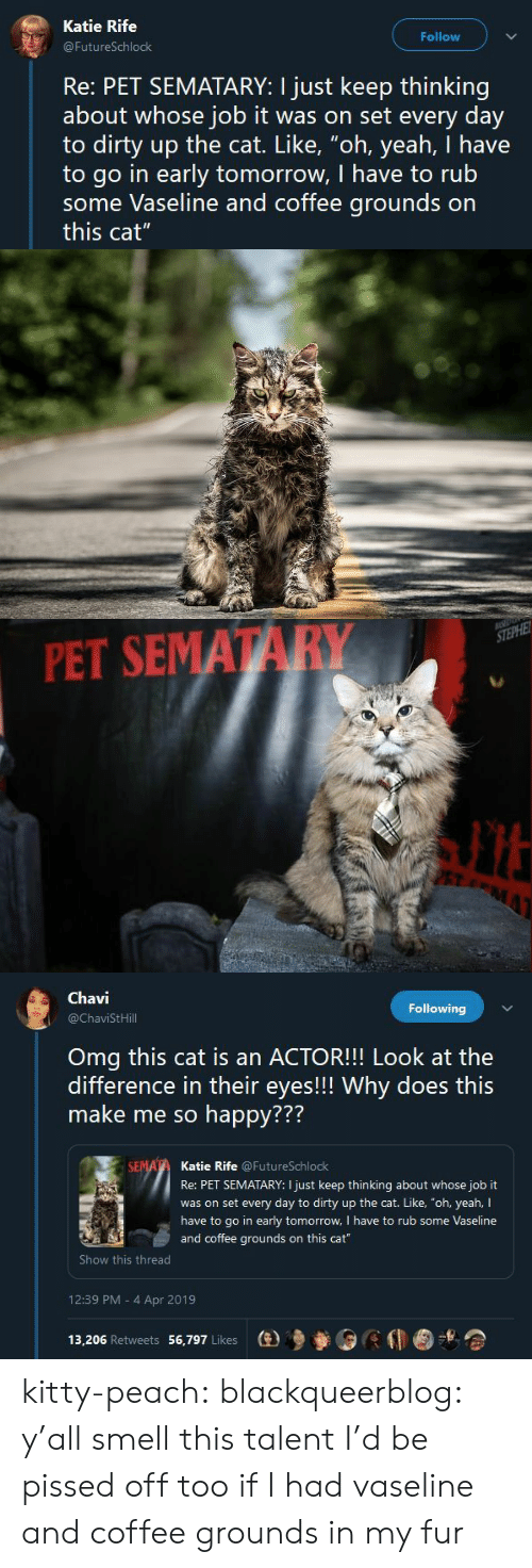 """Omg, Smell, and Tumblr: Katie Rife  Follow  FutureSchlock  Re: PET SEMATARY: I just keep thinking  about whose job it was on set every day  to dirty up the cat. Like, """"oh, yeah, I have  to go in early tomorrow, I have to rub  some Vaseline and coffee grounds on  this cat""""   PET SEMATARY   Chavi  @ChaviStHill  Following  Omg this cat is an ACTOR!!! Look at the  difference in their eyes!!! Why does this  make me so happy???  772  Katie Rife @FutureSchlock  Re: PET SEMATARY: I just keep thinking about whose job it  was on set every day to dirty up the cat. Like, """"oh, yeah, I  have to go in early tomorrow, I have to rub some Vaseline  and coffee grounds on this cat  Show this thread  12:39 PM - 4 Apr 2019  13,206 Retweets 56,797 Likes  (e)乡參0 kitty-peach: blackqueerblog:  y'all smell this talent  I'd be pissed off too if I had vaseline and coffee grounds in my fur"""