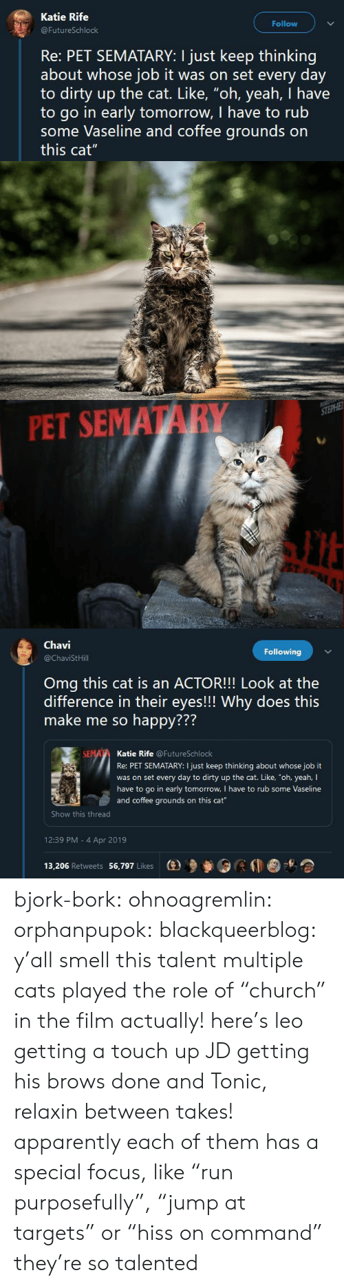 """Apparently, Cats, and Omg: Katie Rife  Follow  FutureSchlock  Re: PET SEMATARY: I just keep thinking  about whose job it was on set every day  to dirty up the cat. Like, """"oh, yeah, I have  to go in early tomorrow, I have to rub  some Vaseline and coffee grounds on  this cat""""   PET SEMATARY   Chavi  @ChaviStHill  Following  Omg this cat is an ACTOR!!! Look at the  difference in their eyes!!! Why does this  make me so happy???  772  Katie Rife @FutureSchlock  Re: PET SEMATARY: I just keep thinking about whose job it  was on set every day to dirty up the cat. Like, """"oh, yeah, I  have to go in early tomorrow, I have to rub some Vaseline  and coffee grounds on this cat  Show this thread  12:39 PM - 4 Apr 2019  13,206 Retweets 56,797 Likes  (e)乡參0 bjork-bork:  ohnoagremlin:  orphanpupok:  blackqueerblog: y'all smell this talent  multiple cats played the role of """"church"""" in the film actually! here's leo getting a touch up JD getting his brows done and Tonic, relaxin between takes!   apparently each of them has a special focus, like """"run purposefully"""", """"jump at targets"""" or """"hiss on command"""" they're so talented"""