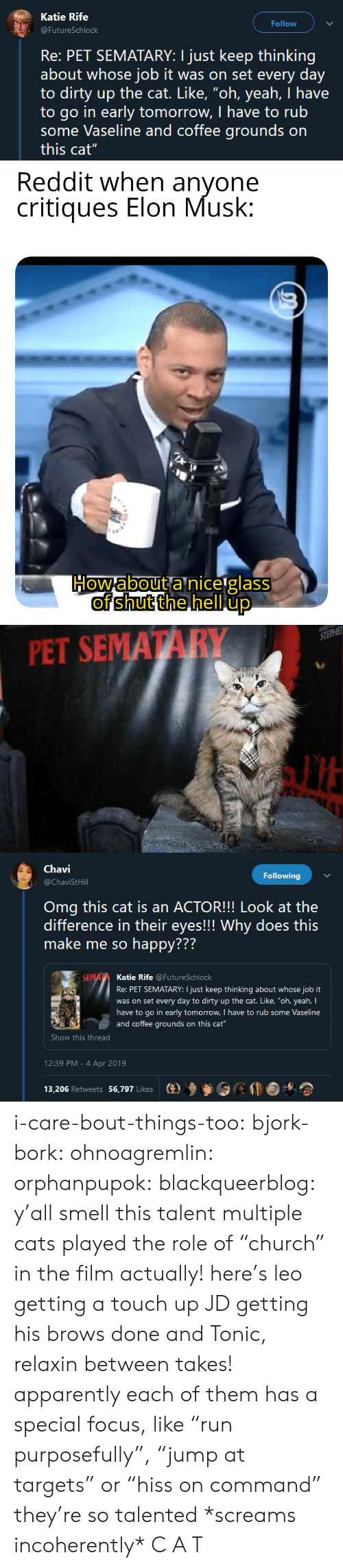 """Apparently, Cats, and Omg: Katie Rife  Follow  FutureSchlock  Re: PET SEMATARY: I just keep thinking  about whose job it was on set every day  to dirty up the cat. Like, """"oh, yeah, I have  to go in early tomorrow, I have to rub  some Vaseline and coffee grounds on  this cat""""   PET SEMATARY   Chavi  @ChaviStHill  Following  Omg this cat is an ACTOR!!! Look at the  difference in their eyes!!! Why does this  make me so happy???  772  Katie Rife @FutureSchlock  Re: PET SEMATARY: I just keep thinking about whose job it  was on set every day to dirty up the cat. Like, """"oh, yeah, I  have to go in early tomorrow, I have to rub some Vaseline  and coffee grounds on this cat  Show this thread  12:39 PM - 4 Apr 2019  13,206 Retweets 56,797 Likes  (e)乡參0 i-care-bout-things-too:  bjork-bork:  ohnoagremlin:  orphanpupok:  blackqueerblog: y'all smell this talent  multiple cats played the role of """"church"""" in the film actually! here's leo getting a touch up JD getting his brows done and Tonic, relaxin between takes!   apparently each of them has a special focus, like """"run purposefully"""", """"jump at targets"""" or """"hiss on command"""" they're so talented     *screams incoherently* C A T"""
