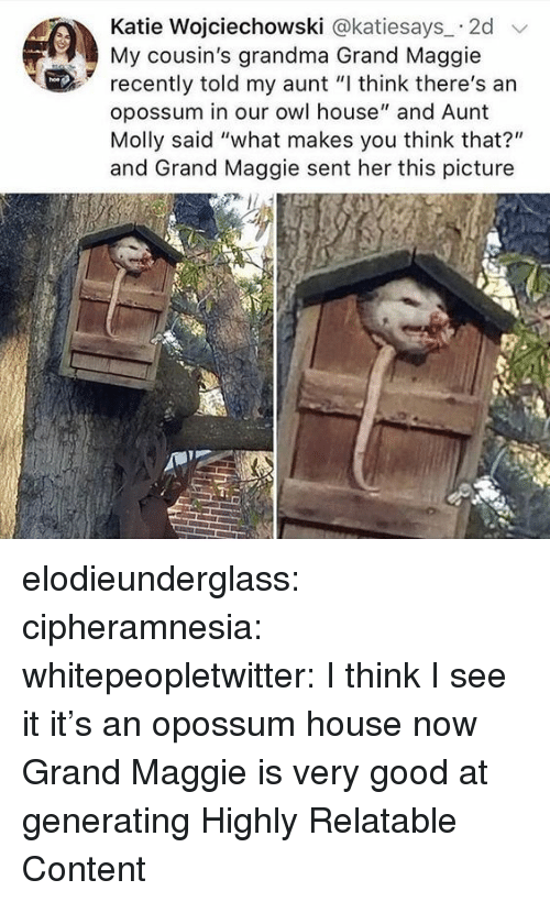 """Grandma, Molly, and Target: Katie Wojciechowski @katiesays 2d  My cousin's grandma Grand Maggie  recently told my aunt """"I think there's an  opossum in our owl house"""" and Aunt  Molly said """"what makes you think that?""""  and Grand Maggie sent her this picture elodieunderglass:  cipheramnesia:  whitepeopletwitter:  I think I see it  it's an opossum house now  Grand Maggie is very good at generating Highly Relatable Content"""