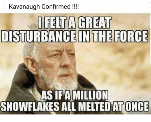 Memes, 🤖, and Once: Kavanaugh Confirmed !!!  IFELT A GREAT  DISTURBANCE IN THE FORCE  AS IFAMILLION  SNOWFLAKES ALL MELTEDAT ONCE