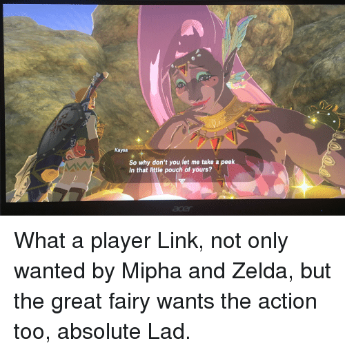 Link, Zelda, and Player: Kaysa  So why don't you let me take a peek  in that little pouch of yours?