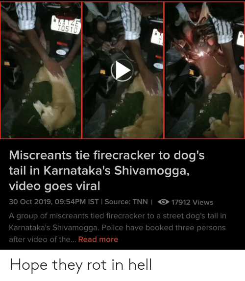 Dogs, Police, and Video: KAZE  TO510  Miscreants tie firecracker to dog's  tail in Karnataka's Shivamogga,  video goes viral  17912 Views  30 Oct 2019, 09:54PM IST I Source: TNN  I  A group of miscreants tied firecracker to a street dog's tail in  Karnataka's Shivamogga. Police have booked three persons  after video of the... Read more Hope they rot in hell
