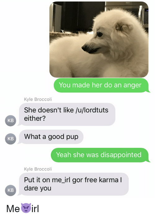 Disappointed, Karma, and Irl: KB  KB  KB  You made her do an anger  Kyle Broccoli  She doesn't like /u/lordtuts  either?  What a good pup  Yeah she was disappointed  Kyle Broccoli  Put it on me irl gor free karma I  dare you Me👿irl