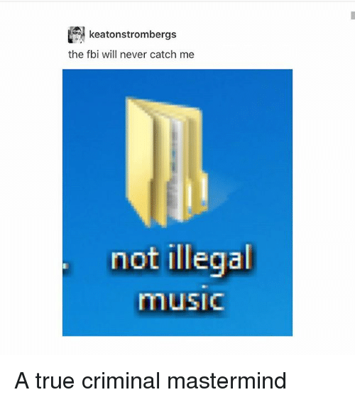 Fbi, Memes, and Music: keatonstromberg  the fbi will never catch me  not illegal  music A true criminal mastermind