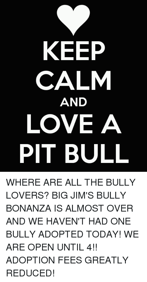 Keep Calm And Love A Pit Bull Where Are All The Bully Lovers Big