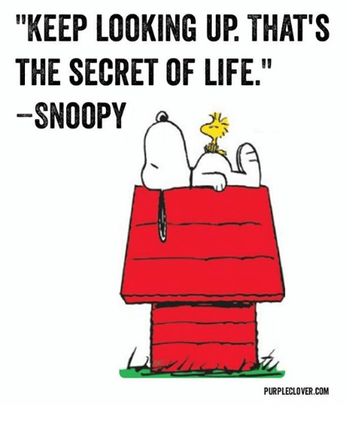 KEEP LOOKING UP THAT'S THE SECRET OF LIFE SNOOPY a ...