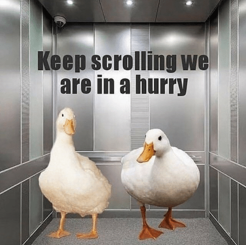 Hurry, Scrolling, and Keep Scrolling: Keep scrolling we  are in a hurry