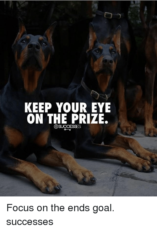 Memes, Focus, and Goal: KEEP YOUR EYE  ON THE PRIZE. Focus on the ends goal. successes