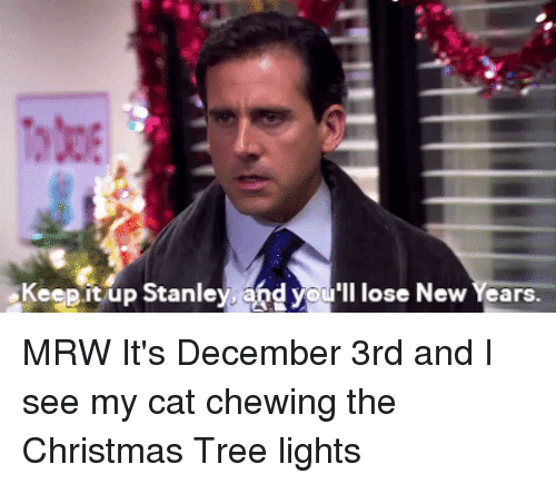 Keepit Up Stanley and You'll Lose New Years MRW It's ...