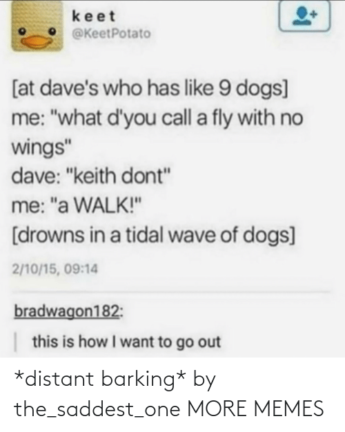 """Dank, Dogs, and Memes: keet  @KeetPotato  [at dave's who has like 9 dogs]  me: """"what d'you call a fly with no  wings""""  dave: """"keith dont""""  me: """"a WALK!""""  [drowns in a tidal wave of dogs]  2/10/15, 09:14  bradwagon182:  this is how I want to go out *distant barking* by the_saddest_one MORE MEMES"""