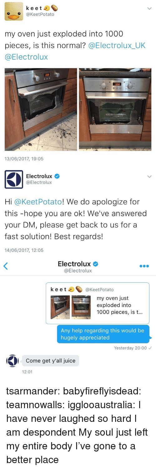 Juice, Target, and Tumblr: keet  O@KeetPotato  my oven just exploded into 1000  pieces, is this normal? @Electrolux_UK  @Electrolux  358  358  13/06/2017, 19:05   Electrolux  @Electrolux  Hi @KeetPotato! We do apologize for  this -hope you are ok! We've answered  your DM, please get back to us for a  fast solution! Best regards!  14/06/2017, 12:05   Electrolux  @Electrolux  keet ^@KeetPotato  my oven just  exploded into  1000 pieces, is t...  Any help regarding this would be  hugely appreciated  Yesterday 20:00  Come get y'all juice  12:01 tsarmander: babyfireflyisdead:  teamnowalls:  igglooaustralia:  I have never laughed so hard  I am despondent   My soul just left my entire body    I've gone to a better place
